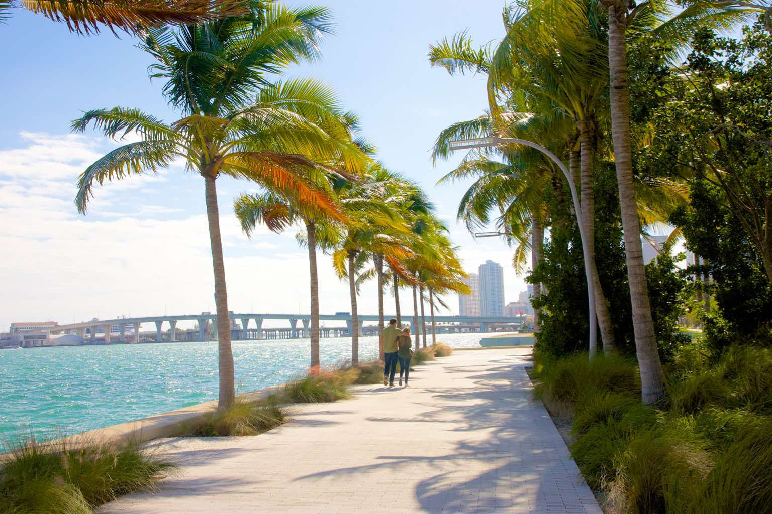 A couple strolls along a palm tree-lined path next to the water in Coral Gables